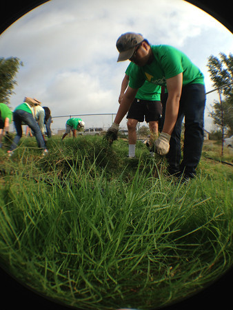 Enactus members working in the High Plains Food Bank Garden