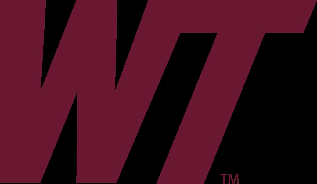 WT Spirit Logo