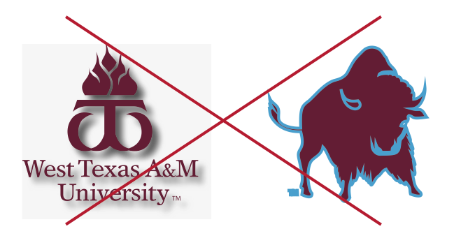 University logo example adding styles or effects