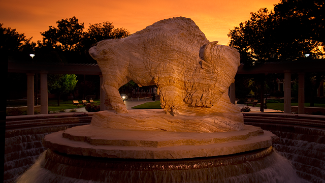 The Original Texans marble buffalo statue at sunset.